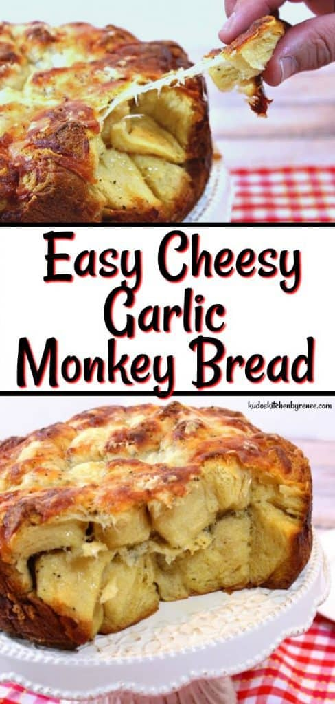This Incredibly Easy & Cheesy Garlic Pull Apart Bread bakes in a springform pan and takes advantage of canned biscuits, making for a very delicious presentation which anyone can make. - kudoskitchenbyrenee.com
