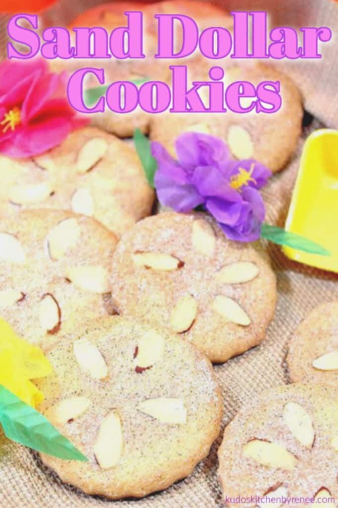 A closeup photo of a pile of sand dollar cookies with colorful flowers and a title text graphic overlay