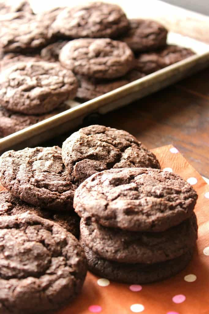Chocolate Chip Malted Cookies