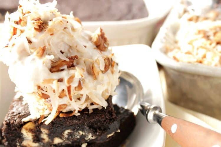 Easy Toasted Coconut Pecan Ice Cream