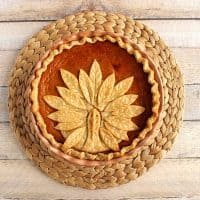 Adorable Turkey Crust Pumpkin Pie