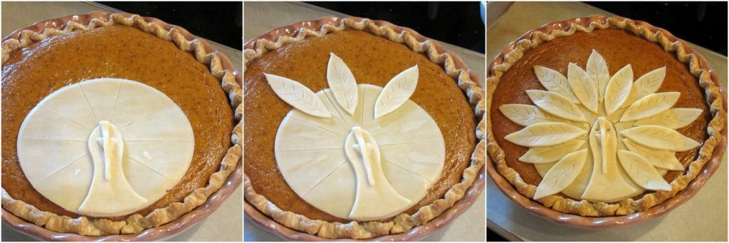 Turkey Crust Pumpkin Pie for Thanksgiving.