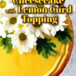 An overhead photo of lemon cheesecake with white daisies on top/