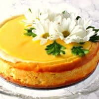Lemon Drop Cheesecake with Lemon Curd Topping