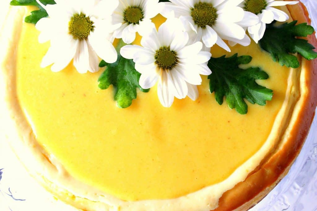 Overhead and closeup picture of lemon cheesecake with daisies on top.