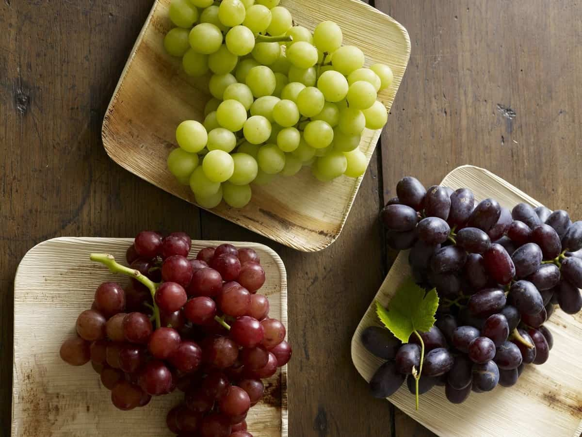 Grapes from California 3 varieties of table grapes
