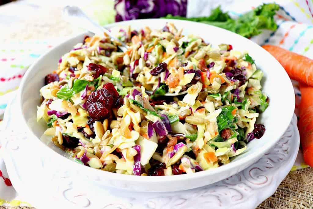 Extra colorful coleslaw with red, purple, orange, and greens in a white bowl.