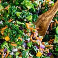 Easy Kale Salad with Fresh Lemon Dressing
