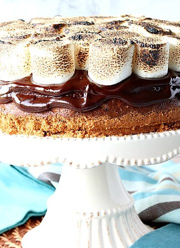 S'mores cheesecake on a cake stand with blue napkins in the background