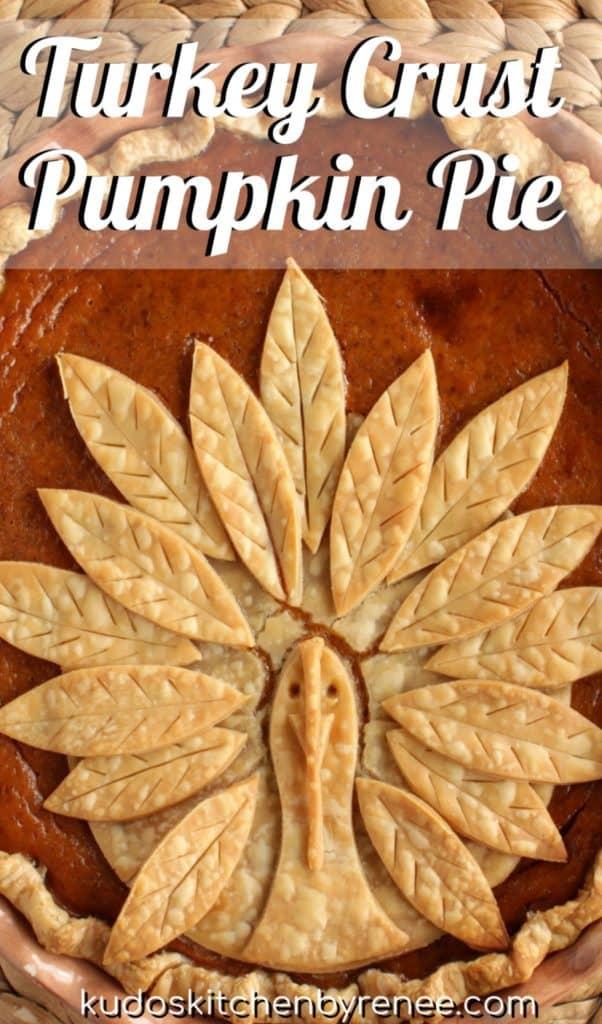 Title text closeup image of turkey crust pumpkin pie.