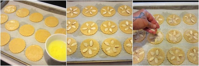 How to make sand dollar cookies photo tutorial.