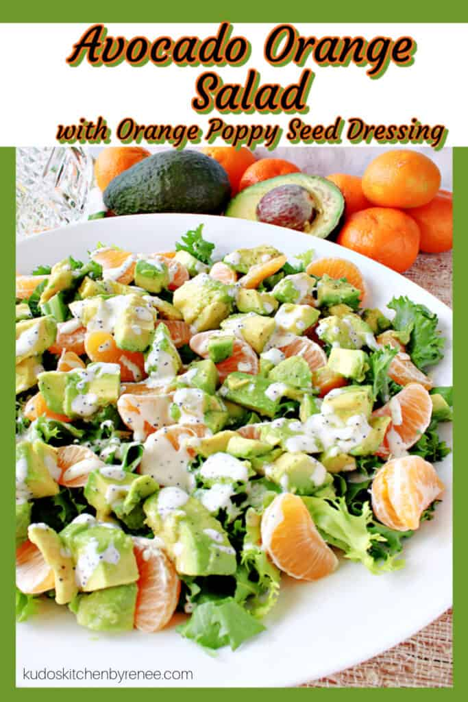 """A vertical """"framed"""" image of Avocado Orange Salad with Orange Poppy Seed Dressing in a white bowl."""