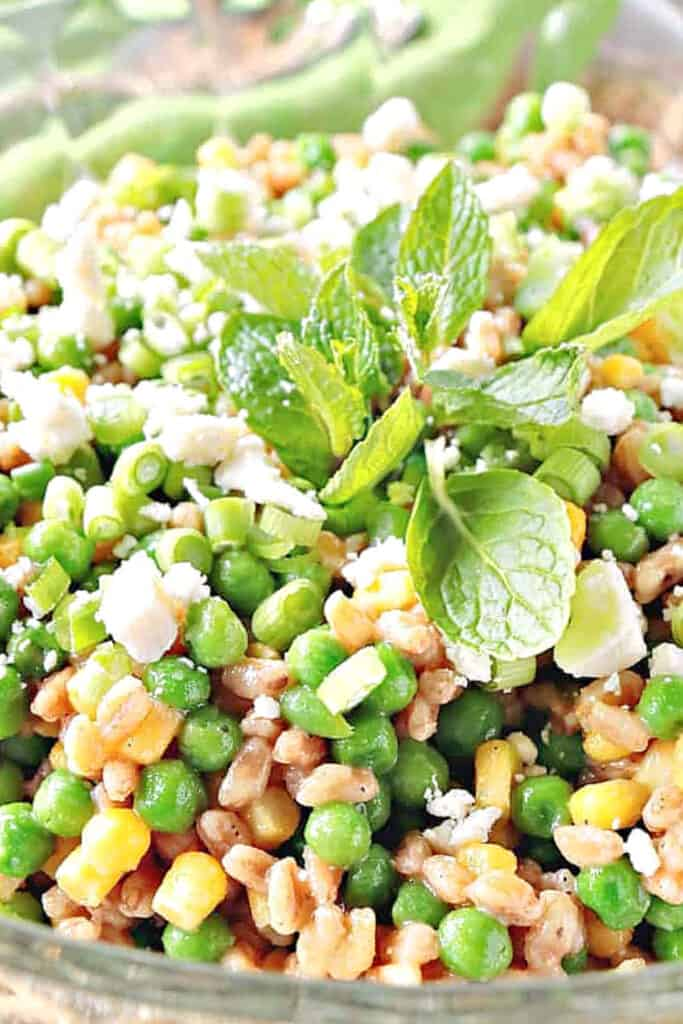 A super closeup vertical photo of a Pea and Farro Salad with corn, feta cheese, and mint.